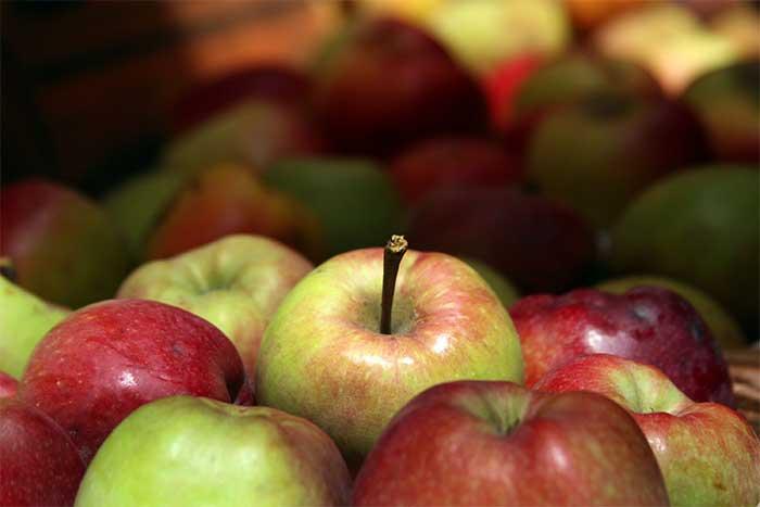 Precios bajos y escaso consumo afectan producción de manzana en Zacatlán