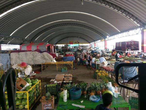 Mercado Revolución, elefante blanco que no ha funcionado en 23 años