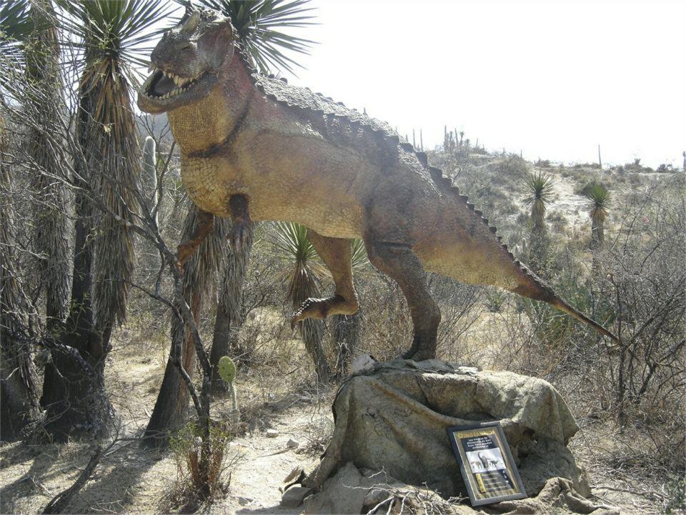 Solicitan a autoridades de Zapotitlán Salinas la apertura del Paleoparque Las Ventas
