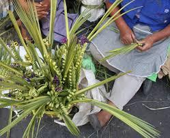 Este Domingo de Ramos, bajas ventas reportan vendedores de palma en Izúcar
