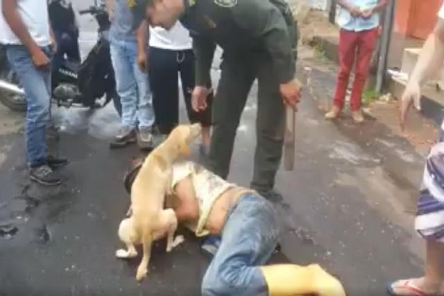 Muere atacada por su perro en Xicotepec