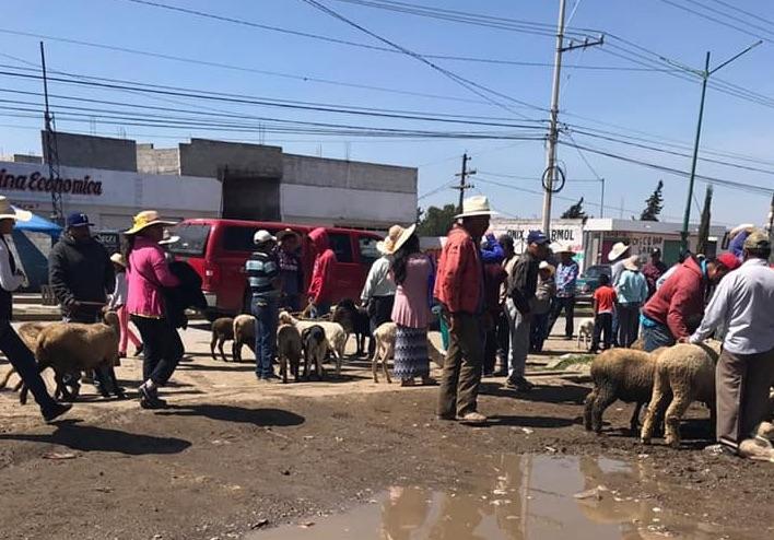Por alza en contagios Covid suspenden mercado de animales en Tepeaca