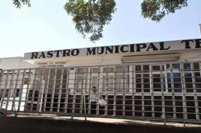 En riesgo ciudadanos de Tehuacán  por consumir carne sin control sanitario