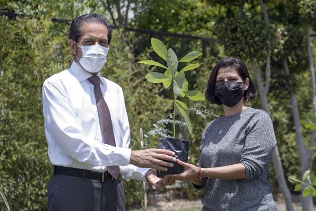 Entrega rector Alfonso Esparza más de 800 especies con Adopta un árbol