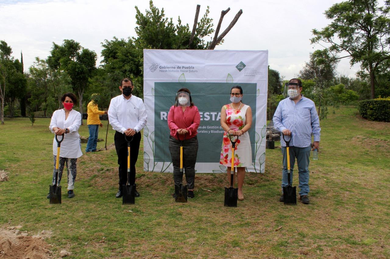 Reforestará Medio Ambiente 179 hectáreas en Puebla