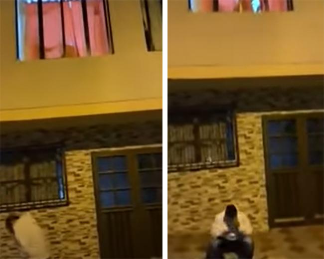 VIDEO Le lleva serenata a su novia y la halla haciendo sexo oral a su amante