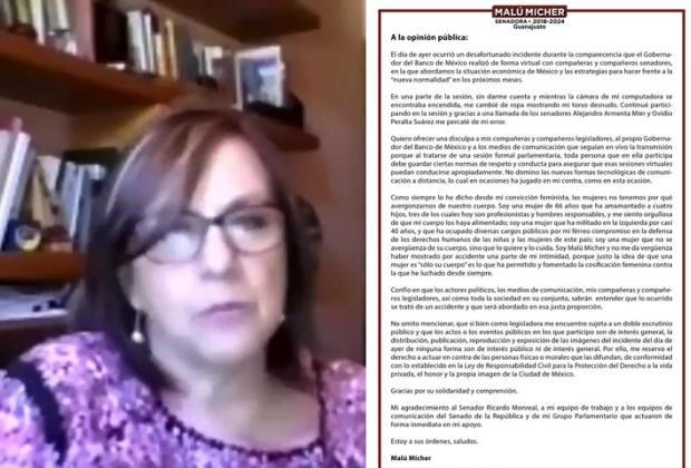 Senadora de Morena se disculpa por salir desnuda a reunión con Banxico
