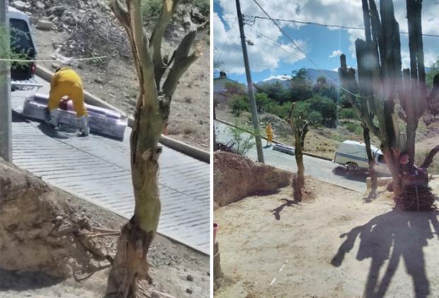 Se le cae a carroza cuerpo Covid y se derraman fluidos cerca de Tehuacán
