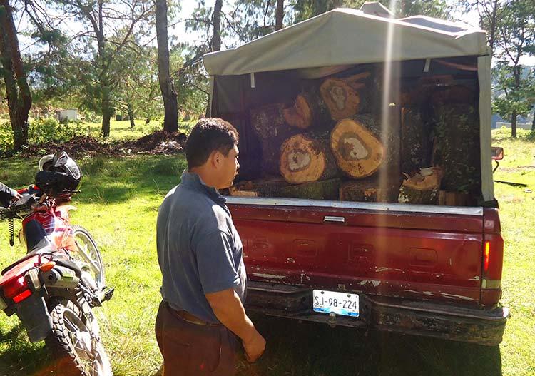 Realizan operativos contra tala clandestina en Zacapoaxtla