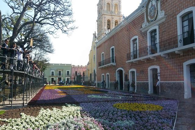 Siempre sí colocarán tapete monumental de flores en Atlixco