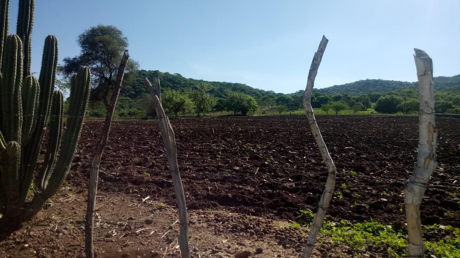 En Tecupilco falta apoyo para productores del campo