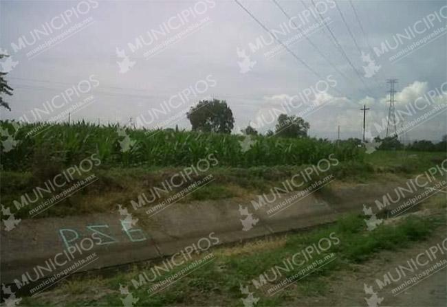 Hallan osamenta en terrenos de cultivo de Tochtepec