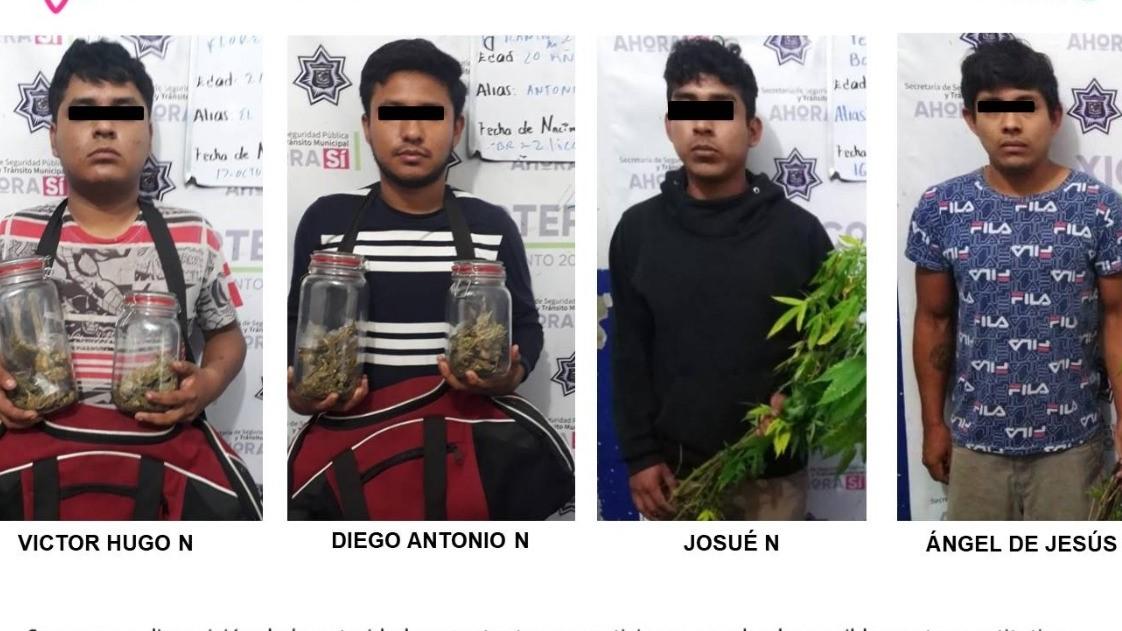Detienen a 4 con marihuana y sustancias tóxicas en Xicotepec