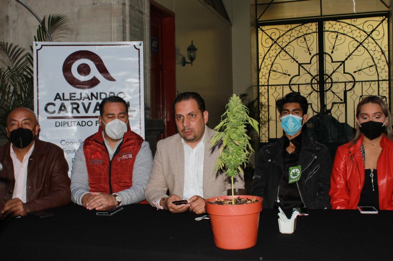 Legalización de marihuana creará 75 mil empleos, señala diputado de Morena