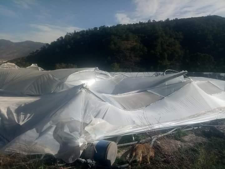 Daños a invernaderos y viviendas provocan fuertes vientos en Aquixtla