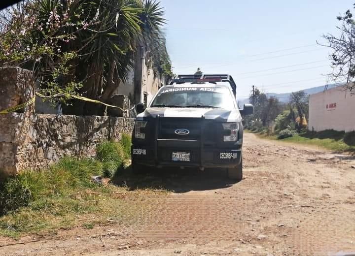 Hallan plantíos de marihuana en vivienda de Tlatlauquitepec