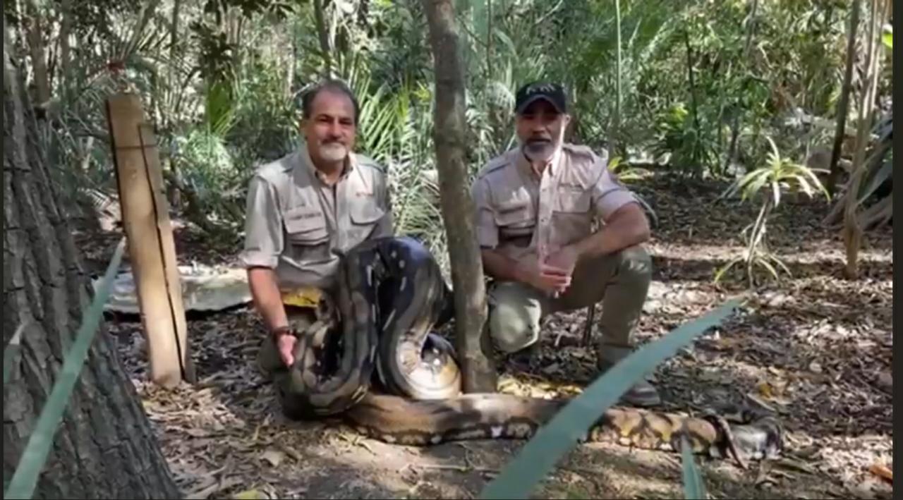 Africam Safari cumple 49 años desde su fundación