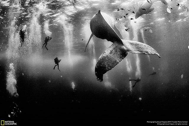 Un tehuacanense gana el segundo lugar del World Press Photo