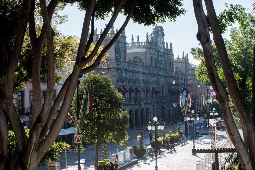 Podarán árboles del zócalo de Puebla ante riesgo para transeúntes